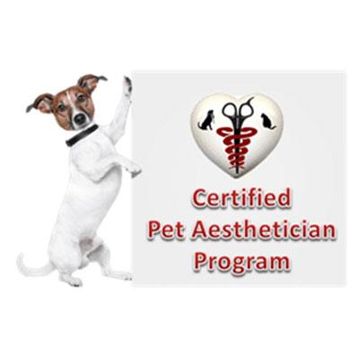Dog rash treatment Indiana